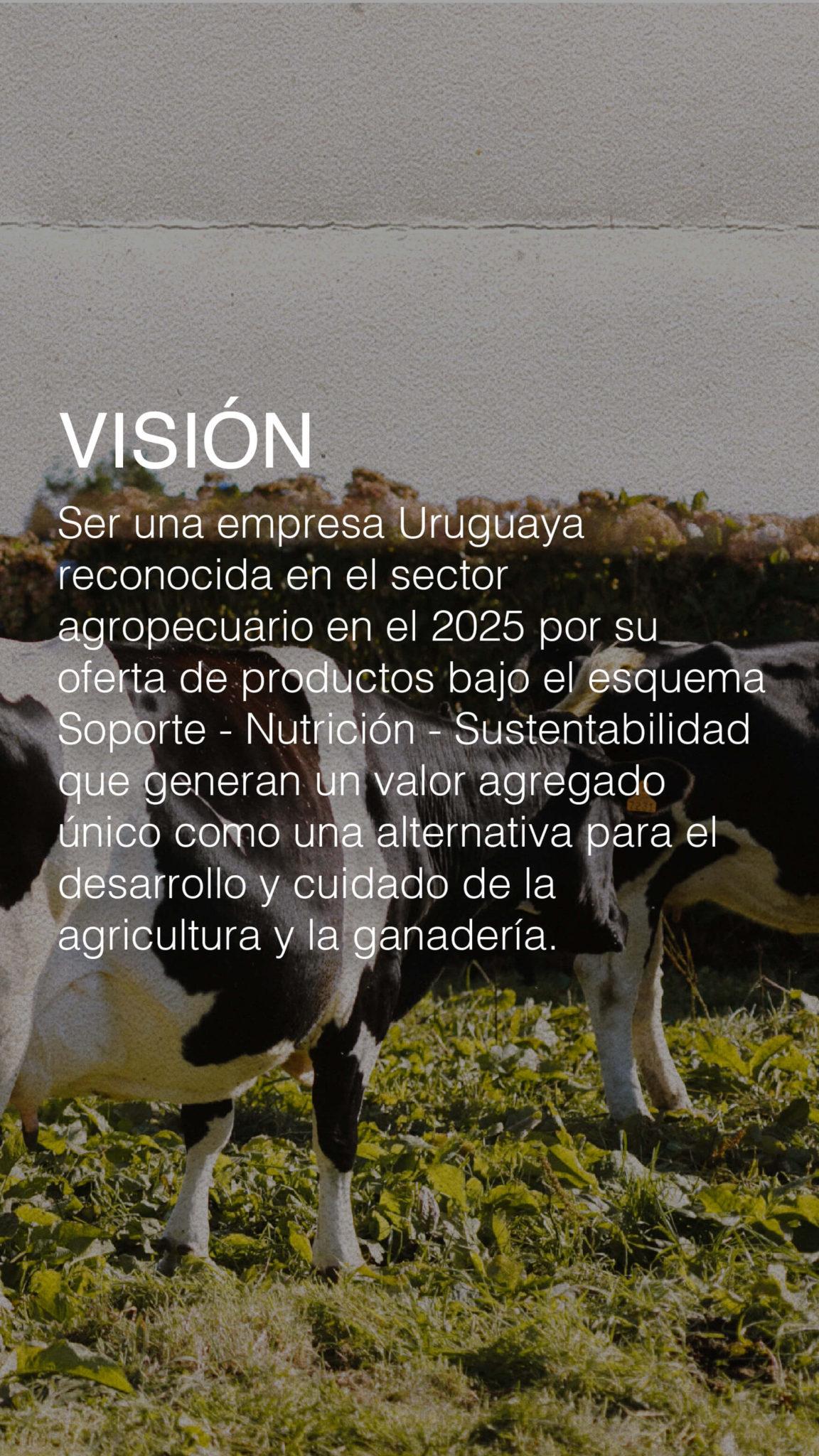 misionvisionvalores.mobile-06